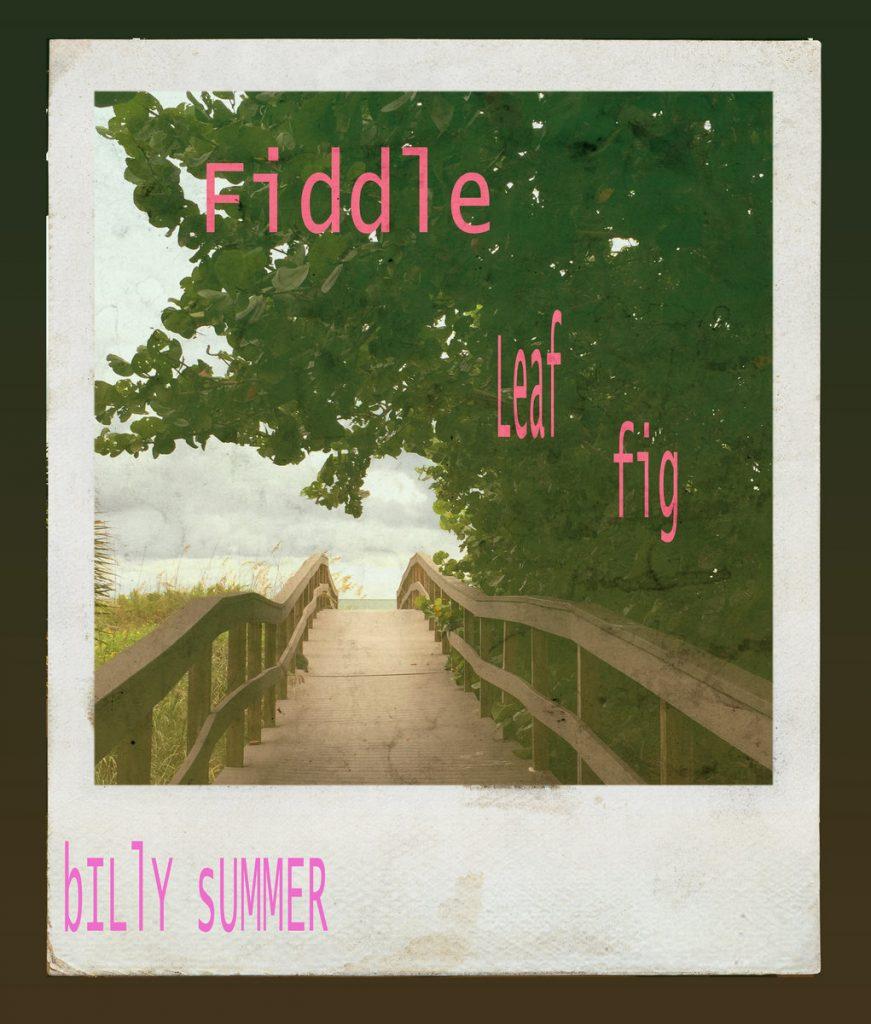 Single: Billy Summer – Fiddle Leaf Fig